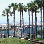 hotel-arts-barcelona-picture