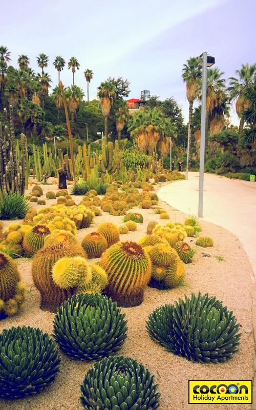Jardins-Mossen-Costa-y-Llobera
