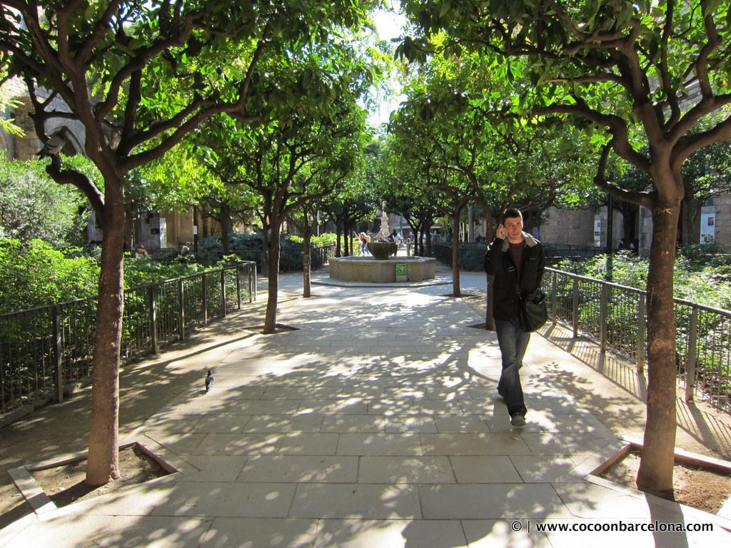 el-jardi-park